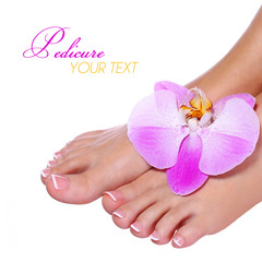 Pedicure with pink orchid flower isolated