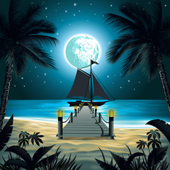 night beach