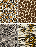 Wild animal skins, seamless vector patterns