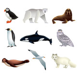 Arctic animals vector set