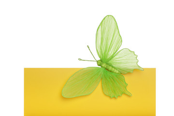 Big green paper butterfly on yellow board