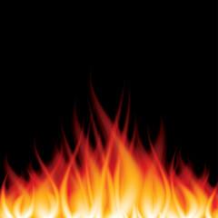 Burning fire on black vector illustration