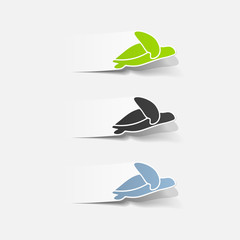 realistic design element: sea ??turtle