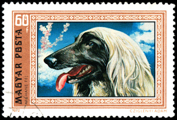 HUNGARY - CIRCA 1972: Postage stamp printed in Hungary showing G