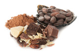 Cocoa oil , cocoa beans, cocoa powder and dark chocolate