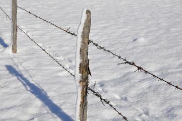 Winterlandschaft mit Stacheldraht