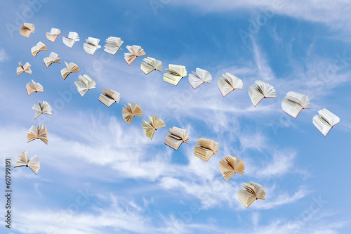 flock of flying books in blue sky