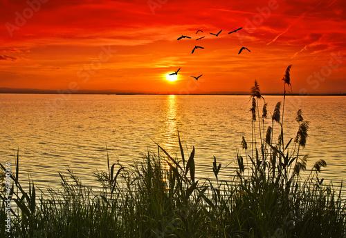 Fotobehang Een Hoekje om te Dromen cuando el mar se pinta de rojo