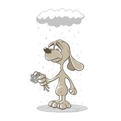 Sorry - Sad dog - Apologize