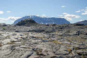 Icelandic landscape with two rocks