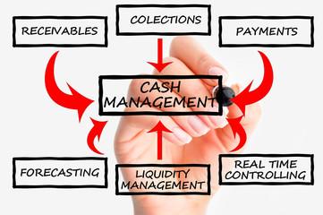 Cash flow management system