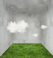 Clouds and grass in a room