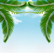 Palm leaves on sky. Vector illustration.
