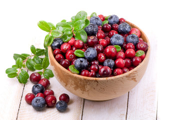 Blueberry and cowberry