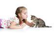 cute kid playing and kissing Scottish kitten
