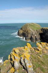 Ynys-Lochtyn peninsula near Llangrannog, Cardigan Bay