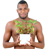 Man with green plant, ecological theme portrait