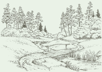 Vector landscape. Wooden bridge over the forest creek