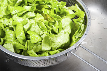 Fresh salad in sink covered water drops