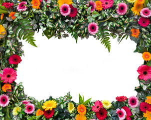 Frame of beautiful flowers.