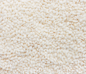 Viola rice from Italy. Uncooked raw white rice close-up.
