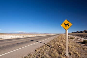 alpaca road sign