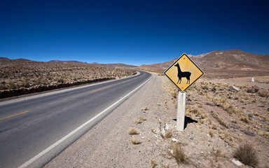 alpaca road sign