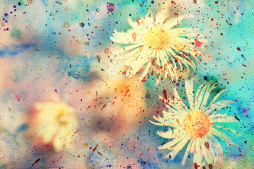 watercolor artwork with small beautiful chamomiles