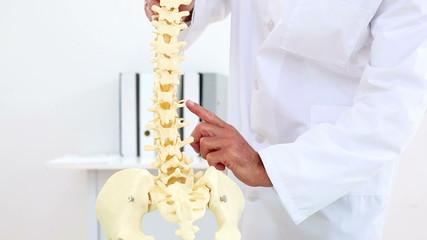 Doctor explaining model of spine to camera