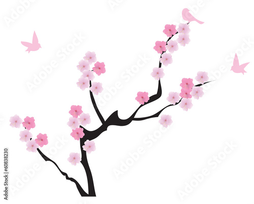 vector cherry tree in blossom with birds