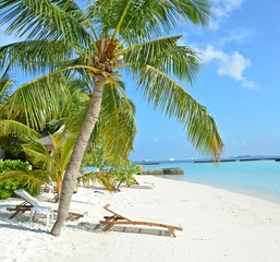 relaxing on the beautiful beach