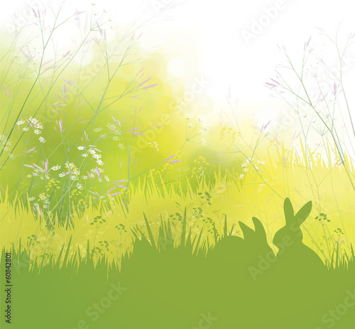 Vector spring background, rabbits in grass.