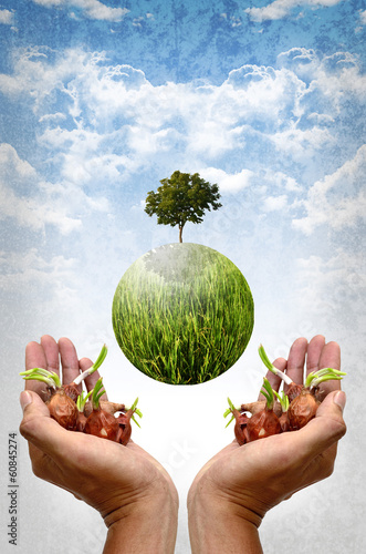 Save the earth by plantation concept