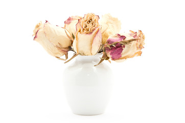 bouquet of pink roses in a pot on the white background