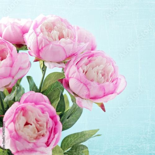 peony flowers - 60852075