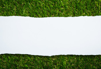 Ripped paper on green grass background