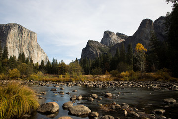 View of El Capitan and Merced river in Yosemite National Park