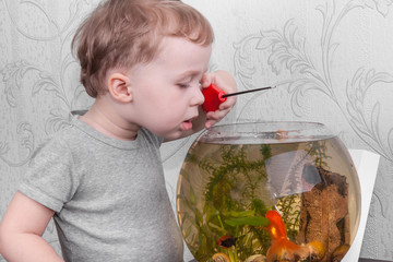 Boy catches fish in aquarium