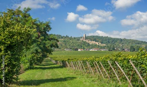 Leinwandbild Motiv Weinort Wachenheim an der Weinstrasse mit Ruine Wachtenburg