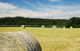 Gathered field with straw bales