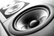 Speaker - 60869268