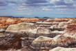 canvas print picture - Petrified forest
