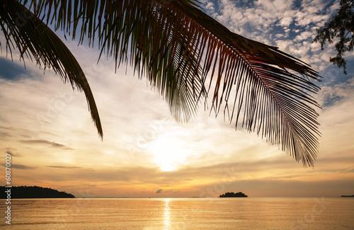 Tropical beach © Galyna Andrushko