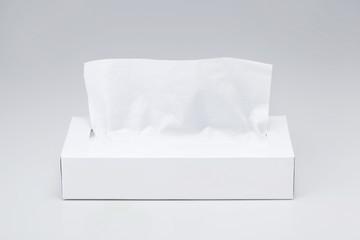 ティッシュ tissue