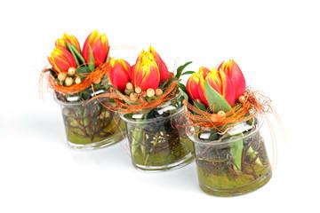 Tulpen in Gläsern