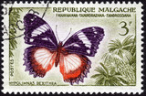 Postage stamp from Madagascar, Malgache in French, showing the e