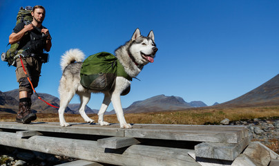 Trekking with dog in Sweden