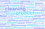 Cleaning Services Word Cloud Concept