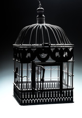 old cage in backlight