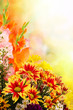 Flower background for layout design, and floral template